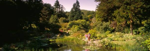 Image showing Arduaine Garden