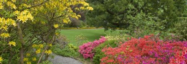 Image showing Geilston Garden