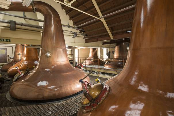 Image showing Glen Moray Distillery