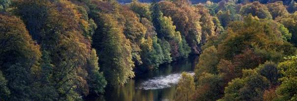 Image showing Killiecrankie
