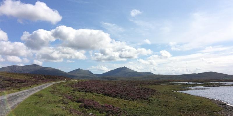 Image showing RSPB Loch Druidibeg